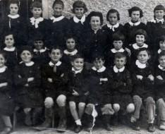 1960 elementari pecorile
